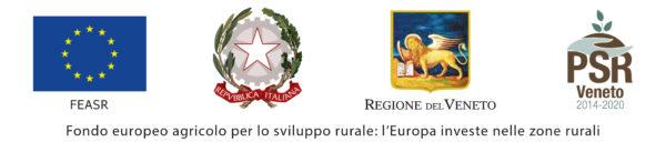 Loghi contributo Regione Veneto
